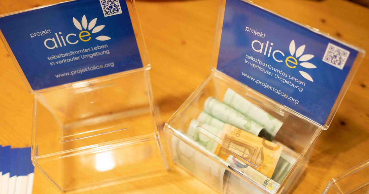Spendenboxen von Projekt Alice